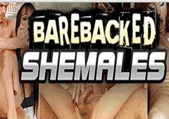 Media offerti da Barebacked Shemales